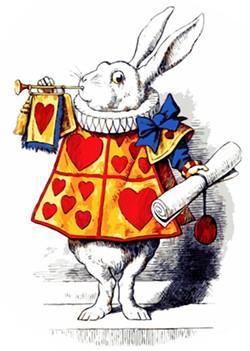 4d7ddb95_rabbit.jpg