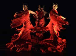 04f4f55d_poema-de-andalucia_flamenco-vivo-carlota-santanaa.jpg