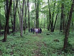 7c16b0a1_plant_walk_at_birnberg_preserve_2015.jpg