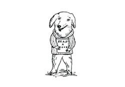5d90335f_b-w_dog_for_website.jpg