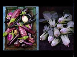 9c238262_eggplants.jpg