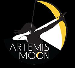b6dd9794_artimus-moon-700x633.png