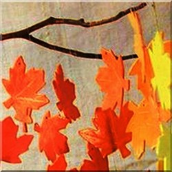 7ac7ee43_clipboard01autumnblazesquare.jpg