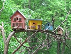 c5175270_birdhouses.jpg