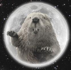 d96d426a_full-beaver-moon.jpg