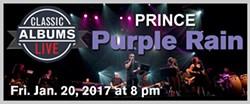 24e94403_purplerain_lgbanner2.jpg
