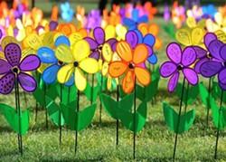 549acf3b_alz_flowers.jpg