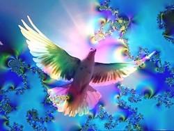 7ec92375_healingthroughspirit.jpg