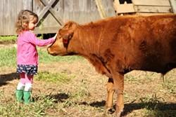 82736202_girl_with_cow_lowerer_rez.jpg