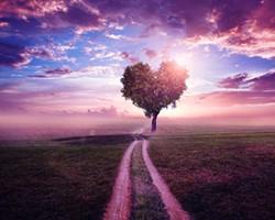 6b4ec368_heart-tree.jpg