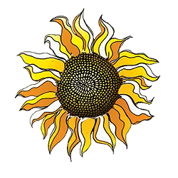 1653fb97_sunflower_png.png