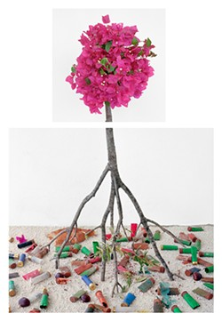 David Halliday, Bougainvillea & Shotgun Shells, 2017, archival pigment print, 34 x 23.5 inches - Uploaded by Carrie Haddad Gallery