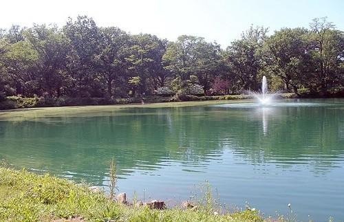 lake_view_-_yelp_user_Jessica_H..jpg