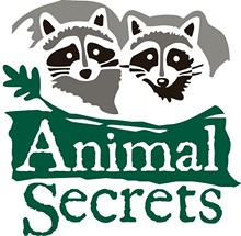 c8bcd2d9_animal-secrets-logo.jpg