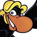 Around Hear: The Buzzard Has Landed