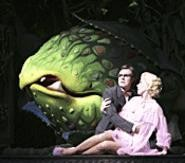 Audrey II prepares for dinner in Little Shop of Horrors.