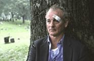 Bill Murray in Broken Flowers: Less Stripes than a solid shade of gray.
