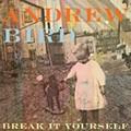 CD Review: Andrew Bird