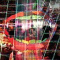 CD Review: Animal Collective