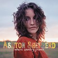 CD Review: Ashton Shepherd