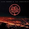 CD Review: Ryan Adams & the Cardinals