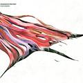 CD Review: Trey Anastasio