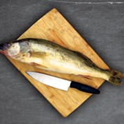 Emptiest Catch? The Quest for Local Fish and Lake-to-Table Dining in Cleveland