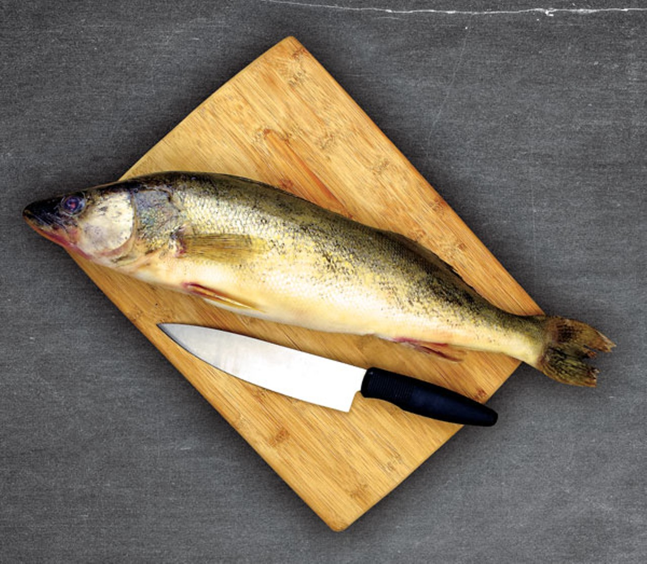 Emptiest Catch? The Quest for Local Fish and Lake-to-Table