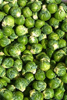 320px-brussels_sprout_closeup.jpg