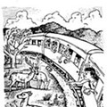 Hoppy Rails