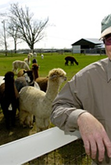 Jerry Forstner's farmhands found alpacas  bleeding from the eyes and shrieking in pain.