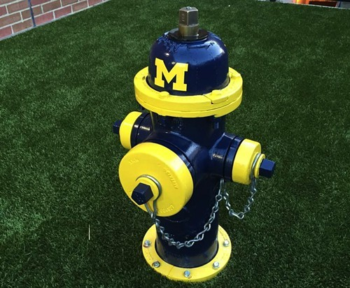 OSU_Michigan_hydrant_2.jpg