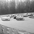 NASCAR Newbies