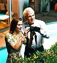 Steve Martin, romancing Claire Danes. Would you believe he wrote it?
