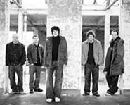 Super Furry Animals: Not concerned about becoming - the next Sting. No, wait -- yes, they are.