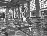 The Brecksville Blue Dolphins pool their resources. - WALTER  NOVAK