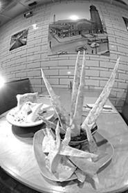 The caf's hummus with homemade chips mug for - the camera. - WALTER  NOVAK