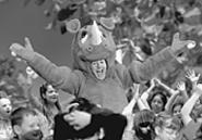 The people's rhinoceros: Edward Norton as Smoochy.