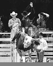 The rodeo horns in on Gund Arena this weekend (see - Saturday).