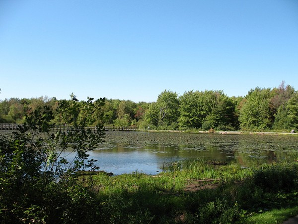 Take a Stroll Through the Cleveland Metroparks