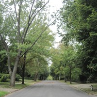 Berkshire Road ...This one kinda came out of nowhere as we sought out the region's most scenic streets. It's intersects with Coventry and cuts a pleasant pathway through surrounding neighborhoods. ERIC SANDY/SCENE