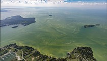 A Call for a Deeper Dive on Lake Erie Algae Problems