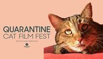 Quarantine Cat Film Fest, Which is Exactly What it Sounds Like, to Screen Virtually at Cleveland Cinemas