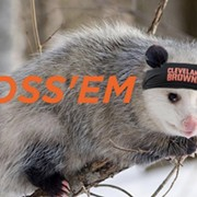 Cleveland Browns Rally Possum-Mania Has Hit Critical Mass
