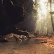 Labor Day Hiker Killed By 'Dislodged' Branch in Hocking Hills, Third Fatality There This Summer