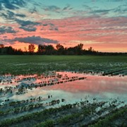 Report: Ohio Farmers Can Help Solve Climate Crisis