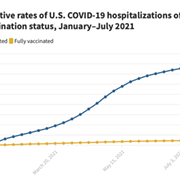 These Charts Show That COVID-19 Vaccines Are Doing Their Job