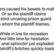 Ohio Judge Shoots Down Inmates' Pants-Pooping Lawsuit with Poem