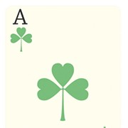 Twenty-Five: Ireland's National Card Game