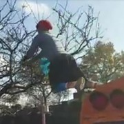 Video: Here's a Browns Fan Jumping Off a School Bus Into a Tree